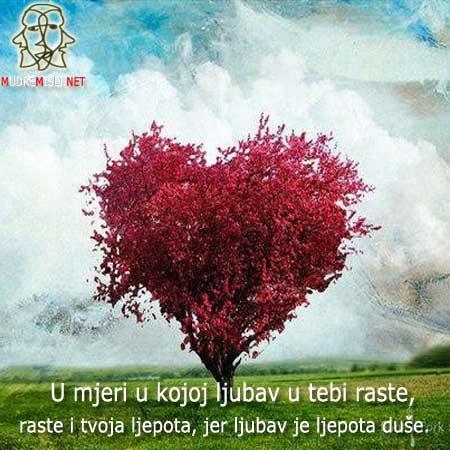 U mjeri u kojoj ljubav u tebi raste, raste i tvoja ljepota, jer ljubav je ljepota duše.